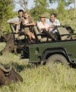 Kruger Safari Packages
