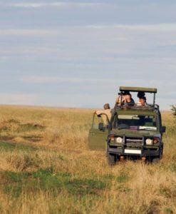 Serengeti Safari Lodges