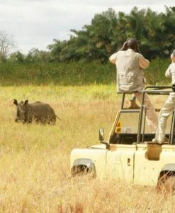 Meru National Park Lodges