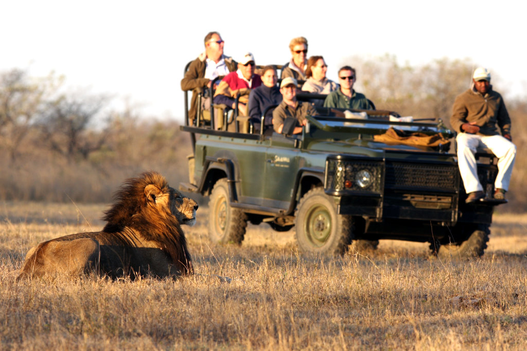 African Safaris for Disabled People