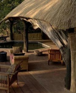 South Luangwa Safari Lodges
