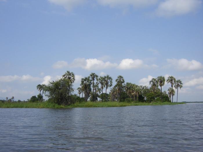 Liwonde River