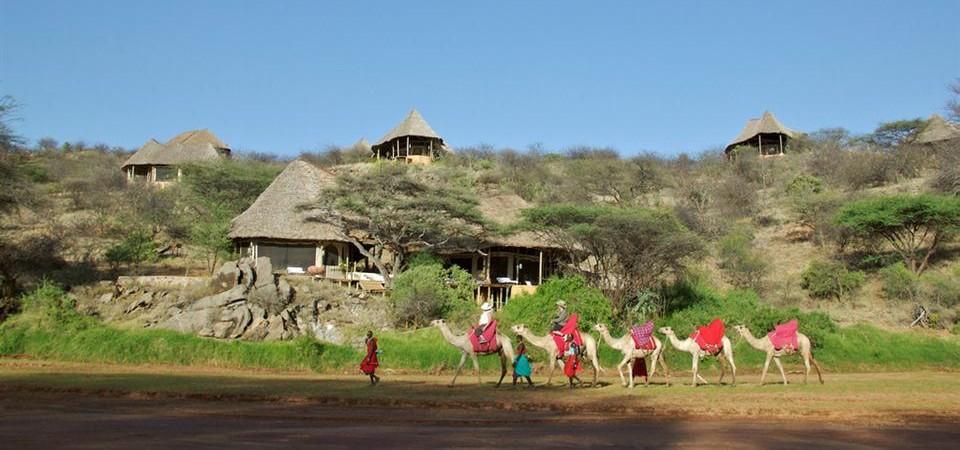 Elephant Bedroom Camp Samburu Safari Lodges Safari Guide Africa