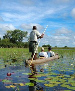Botswana Safari Lodges