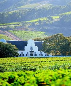 Cape Winelands Hotels
