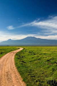 Kilimanjaro Road