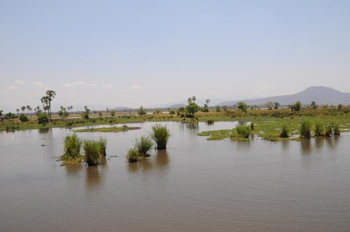 liwonde-river-flood-plains