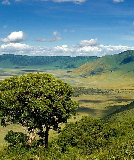 ngorongoro-crater-category