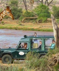 Samburu Intrepids Safari