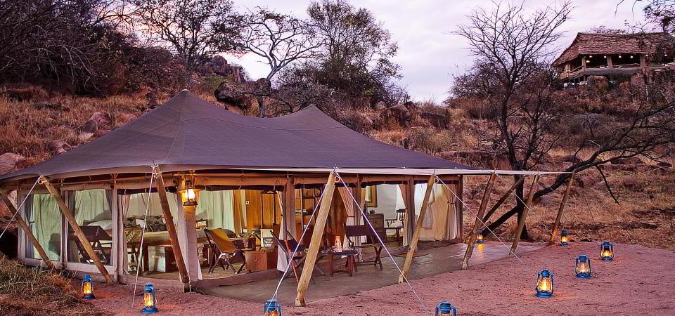 serengeti pioneer camp room