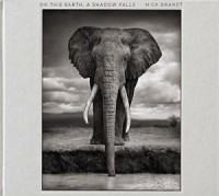 nick brandt on this earth