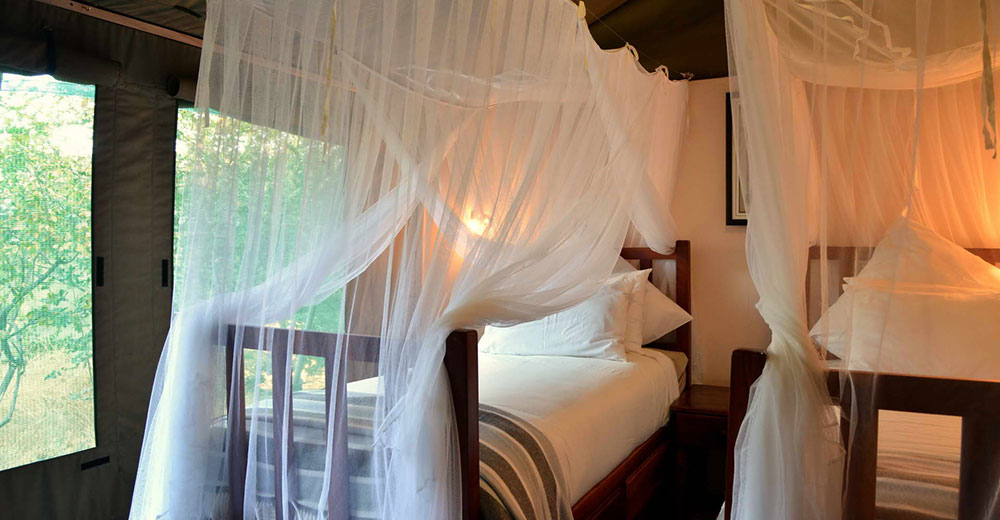 Elephant Valley Lodge Family Suite