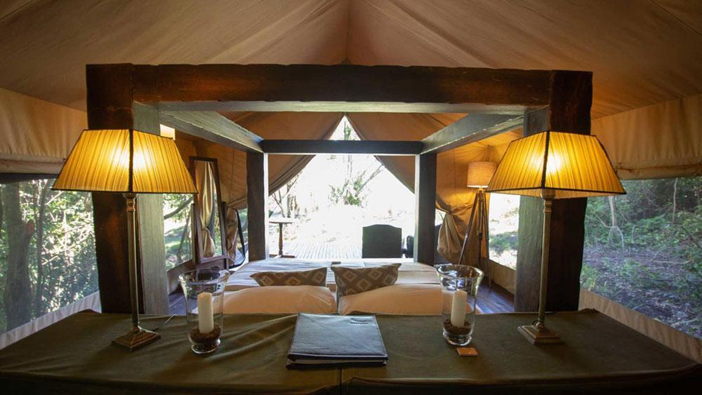 Kichwa Tembo Standard Suite