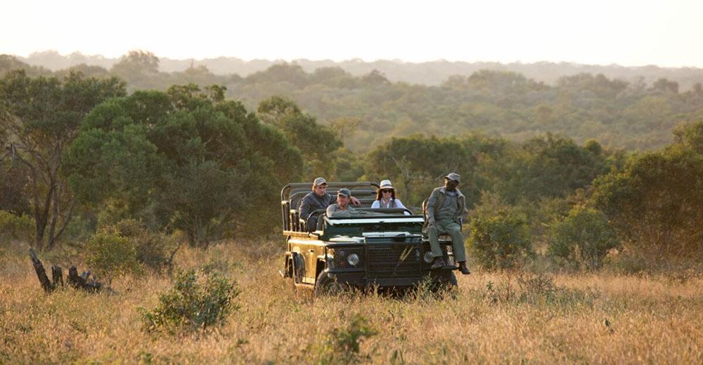 Royal Malawane Vehicle Safari
