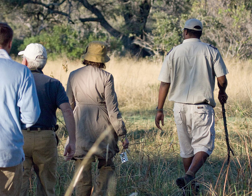 Belmond Eagle Island Lodge Walking Safari