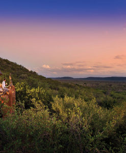 Madikwe Safari Lodge Viewing Deck